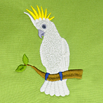The 'Bird' Behind the Birds plus FREE Cockatoo Design