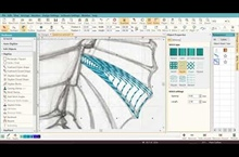 Digitizing the Seahorse - Part 2 - Digitizing the Fin