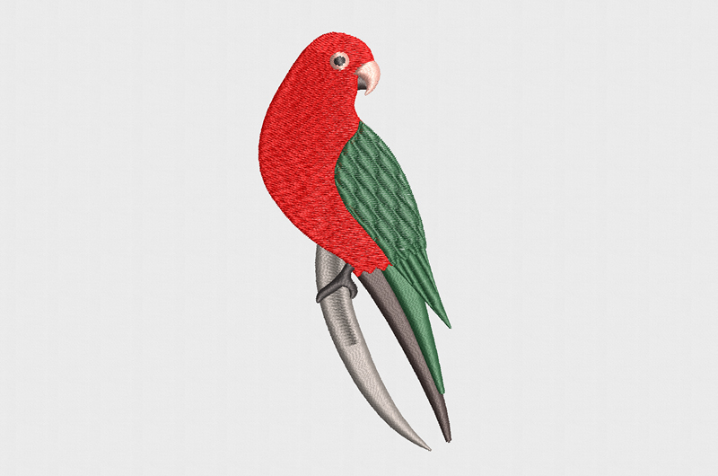 king parrot machine embroidery design